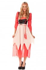 Oktoberfest Wench Beer maid Costume