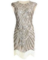 1920s Great Gatsby Charleston Party Costume Tassel Flapper