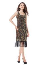 Ladies 1920s Flapper Vintage Costume Dress