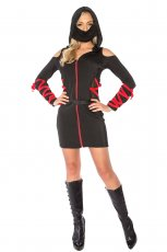 Ladies Ninja Fancy Dress Costume