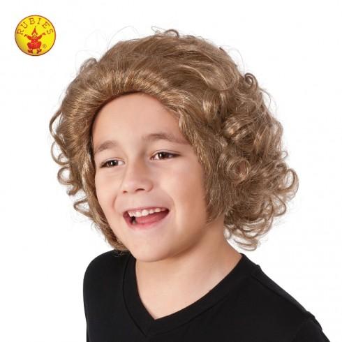 Boys Willy Wonka Book Week Wig cl32987