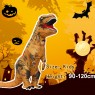 Brown Kids T-Rex Blow up Dinosaur Inflatable Costume