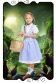 Dorothy The Wizard of Oz Girls Costume Book Week Dress Kids Child