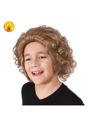 Boys Willy Wonka Book Week Wig cl32987