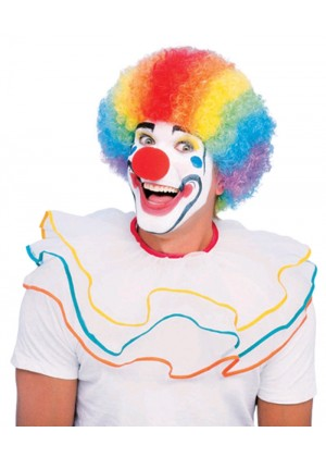 Ladies Mens Multi Coloured Rainbow Circus Afro Clown Fancy Dress Costume Accessory Outfit Wig