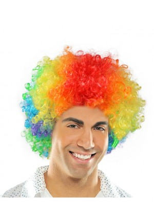 Rainbow Funky Afro Wig