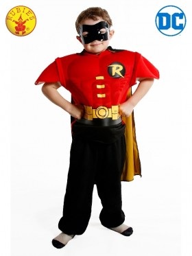 Boys Robin Eva Dress Up Set