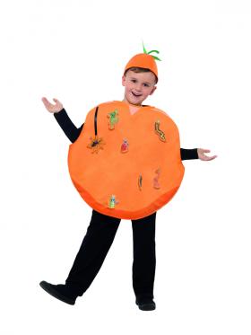 Kids Roald Dahl James And The Giant Peach Costume Boys Girls Book Week Fruits